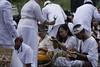 melasti ceremony 2018 (Iwan Madari) Tags: baliculture balinese hinduism madariphotowork madariphoto culture religion ceremony ritual spiritual semarangindonesia marinabeach