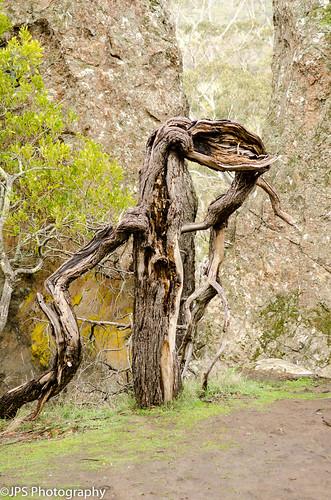 Hanging Rock06