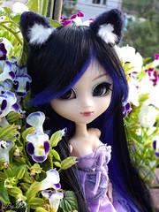 Violet (♪Bell♫) Tags: pullip naomi momoko yoko doll groove