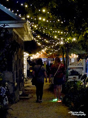 P1650112 (Christen Ann Photography) Tags: 2017 auckland christmas christmaslights christmaslights2017 december2017 lights motat motatevent museumoftransportandtechnology newzealand watermarked westernsprings