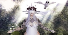 Ascending (☢.:Myth:.☢) Tags: anypose secondlife sl angelic owl blind roses sun beams glare grass hills forest woods magical tattoo portrait