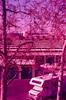 Santa Clara (bior) Tags: sensia sensiaii fujifilm slidefilm minoltasrt101 35mm expiredfilm purple vivitar2870mm vivitarlens pink lockers selfstorage santaclara rv recreationalvehicle camper