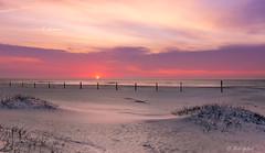 Assateague Sunrise (robert_golub) Tags: dunes color sand sunrise water ocean beach assateague
