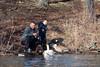 march 2018 lake katherine (timp37) Tags: palos march 2018 illinois lake katherine father son kid feeding ducks swan wildlife