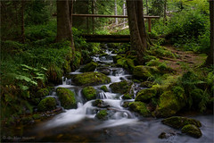 bridge over troubled water (klaus.huppertz) Tags: waldhäuser water wasser creek bach wald forest natur nature outdoor bridge brücke landscape landschaft beck stream brook bayerischerwald bavarianforest nationalpark rock fels moos moss grün green nikon nikond750 d750 nikkor 2470mmf28g greatphotographers greaterphotographers nd neutraldensityfilter