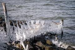 2018-03 Echt ijskoud met aanvriezende oevers bij Stad aan 't Haringvliet/NL (Meteo Hellevoetsluis) Tags: 0318 2018 aboutpixels almanak goereeoverflakkee haringvliet holland lenteseizoen mnd03 nikond7200 nl nederland netherlands nikon springseason stadaantharingvliet zuidholland binnenwater border collecties eau forecast freezing freezingcold freshwater frost geografie geography ice ijs landscape landschap maart march meteo meteorologie meteorology nature natuur oever temperature temperatuur vorst vrieskou water weather weer weerbericht almanak20180318