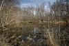 Rural Pond (Notley Hawkins) Tags: httpwwwnotleyhawkinscom notleyhawkinsphotography notley notleyhawkins 10thavenue pond water wet reflect reflection boonecountymissouri rural landscape outdoors 2018 march sky woods trees tree