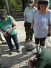 P1070410 (Tricia's Travels) Tags: volunteer volunteering travel vietnam habitatforhumanityvietnam habitatforhumanity globalvillage