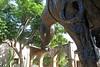 Mission San Juan Capistrano (6) (AntyDiluvian) Tags: california losangeles la mission spanishmission sanjuancapistrano sculpture horse euestrian