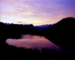 Purple Heart  (Film) (Harald Philipp) Tags: aegeri zug switzerland reflections film ektar iso100 pentax 67 6x7