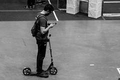 IMG_7548 (holytrinityrobotics) Tags: oakville omgrobots light event coverage robot robotics hersheyscentre gold mechanical electrical pneumatics onchampsfrc first firstcanada frc ontario tronic titans