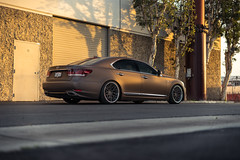 Lexus LS460 | RS-13 • S2 Profile
