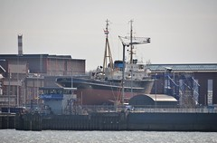 Elbe (Hugo Sluimer) Tags: tugspotter elbe portofrotterdam port haven dehaas nederland zuidholland heijplaat nlrtm holland sleepboot onzehaven