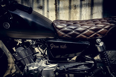 Free ride, free life (Tài Trần) Tags: yamaha tracker caferacer lightleak sunlight lighting seat motorcycle