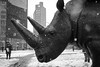 NYC _180321 _ 5098 (kevinbarry7) Tags: kmb kevinmichaelbarry photography nyc newyorkcity snow snowstorm blackandwhite weather city street rhino wildlife sculpture awareness statue astor place