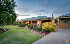 10 Wadsworth Drive, Gol Gol NSW