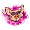 P.I.G. (slava sashko) Tags: pig glasses blast vector