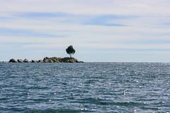 Lago Titicaca (RunningRalph) Tags: isladelsol lago lagotiticaca lake laketiticaca meer sunisland titicaca titicacameer departamentodelapaz bolivia bo