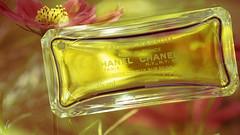 Chanel N° 5 (Renate Bomm) Tags: 7dwf blume büte chanelnr°5 crazytuesdaytheme doppelbelichtung duft macroorcloseup perfume renatebomm samyangaf35mmf28 sonyilce6000 doubleexposure flower kw16 106365