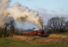 """""""The Red Jub Up The Bank"""" Jubilee 45699 'Galatea' (Liam60009) Tags: wilpshire wilpshirebank jubilee 45699 galatea jub red sun sunset evening thecathedralsexpress cathedralsexpress mainline mainlinesteam steam steamlocomotive steamtrain steaming exhaust clag bank incline sony sonya7rii a7rii"""