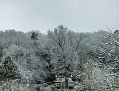Paysage hivernal (vostok 91) Tags: vostok91 fujix20 fujifilm france îledefrance essonne buressuryvette neige forêt arbres maison