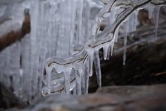 Glace (bulbocode909) Tags: valais suisse hiver gel glace nature montagnes pissevache vernayaz