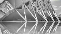 Edificios y Ciencia (Renate Bomm) Tags: renatebomm agua architektur ciudaddelasartesylasciencias gebäude highkey mirror smartphone smg901f spiegelung valencia wasser wasserspiegelung white 7dwf bw