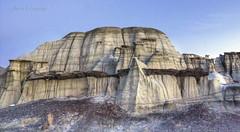 Bisti giant log (Chief Bwana) Tags: nm newmexico bisti bistibadlands petrifiedwood badlands fossils geology psa104 chiefbwana