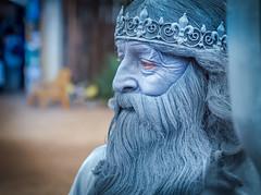 The King .... (max tuta noronha) Tags: goldcanyon renaissancefestival wizard mono rei sorceress bruxo arizona