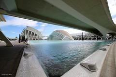 Peospettiva  City Arts (IVAN 63) Tags: valencia spain city arts sciences cityoftheartsandsciences