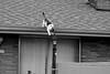 CoolCat leaping (coolbus) Tags: cats blackandwhite nikon nikkor fun felines