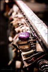 Those love locks again (G. Postlethwaite esq.) Tags: bakewell dof derbyshire macro beyondbokeh bokeh bridge closeup depthoffield fullframe lovelocks padlocks photoborder rain raindrops selectivefocus