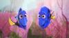 FINDING DORY (princeallav) Tags: findingdory findingnemo nemo dory marlin pixar pixaranimation animation disney ellendegeneres tyburrell edo'neill kaitlinolson eugenelevy albertbrooks dianekeaton andrewstanton lindseycollins idriselba dominicwest destiny bailey hank fluke rudder