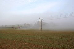 Power up (Andrew 62) Tags: field mist landscape