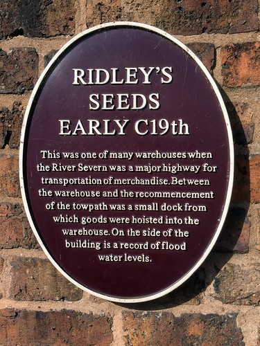 Ridley's Seeds