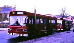 Slide 115-16 (Steve Guess) Tags: london transport buses ls leyland national lt lbl lewisham borough england gb uk bus ls366 byw366v ls97 ojd897r