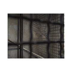 Security.  ( Pamplona ) (José Luis Cosme Giral) Tags: security decay minimalism suburbanplace industrialplace textures metalmesh oxide lights shadows walls olympus pamplona navarrra abstractreality