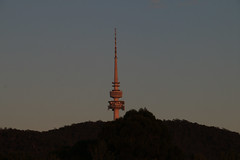 Telstra Tower (Jungle Jack Movements (ferroequinologist)) Tags: telstra communication mobile phone tower black mountain acton national museum australia penisula act australian capital territory canberra dawn sunrise daybreak morn morning beginning start emergence dawning commencement day daylight sunup cockcrow break sun rise colour color daytime sunshine early glare bright light sunny brilliant build building built erected construction architecture architect shape size figure form make manufacture assemble fabricate join structure create production edifice skyscraper first crack up explore explored