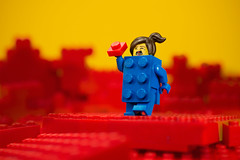 Red and Blue (BrickVin) Tags: lego minifigure series birthday bluebrick run redbrick macro toy cartoon figure lumix red blue mountain photography 40years yellow brick cinema collectibleminifigure photo collection legocollection