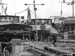 Magnifique, Veemkade 7-4-2018 (kees.stoof) Tags: magnifique veemkade amsterdam oostelijkhavengebied easterndocklands haven schepen scheepvaart ships