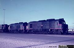 J741 X1016 X1001 Forrestfield (RailWA) Tags: x1001 yalagonga x1016 djukin forrestfield railwa westrail philmelling joemoir