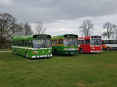 Leyland National line-up at Detling by Chris Gaskin (focus- transport) Tags: detling bus coach show malta silver star portsmouth corporation guide friday eurocruiser west riding farthing coaches autocar metrobus chalkwell london buses brighton hove stagecoach nu venture go goahead general nbc eastern counties first essex bedford ql vas5 sammut leyland atlantean royal tiger doyen olympian national weymann mcw volvo b10m b7tl van hool dennis dart trident plaxton pointer alexander alx400 scania l94ub east lancs supreme iv metropolitan president coachworks bristol relh6g wright axcess floline