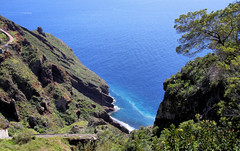 Madeiran Coast (robin denton) Tags: madeira portugal island travelphotography seascape landscape cliffs beach garajau ocean atlanticocean tree