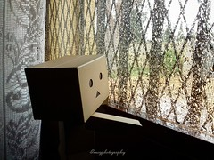 """""""Today there are temporary."""" Photo taken with my Samsung Galaxy J3 phone. (Geno G.) Tags: danbo danboard toyphotography toy rain lluvia nubes temporal ventana juguetes movil fotomovil genog yotsuba japan explorer windows viento japantoy anime"""