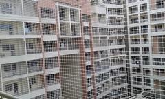 balcony safety nets bangalore (birdnetting1) Tags: pigeon safety net bangalore bird netting anti how get rid pigeons balcony
