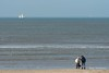 Pony with sailing boat and windmills. (Marc Haegeman Photography) Tags: seascapes sea coastline nature beach noordwijk marchaegemanphotography netherlands pony lines nikon nikon200500mmf56evr