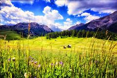 Ti sorridono i monti ... (Gio_ guarda_le_stelle) Tags: dolomiti dolomites dolomite dolomiten mountainscape spring primavera fiori sky clouds heidi nuvole prati flowers altopiano corse nature natura bello canon