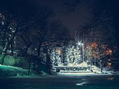 Lonely lantern (QualCore) Tags: саратов парк ночь огни зима россия глубинка провинция russia saratov light night sky white