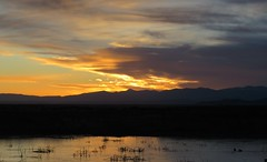 At Sunrise (Patricia Henschen) Tags: alamosa colorado sanluisvalley mountains clouds rural southriverroad backroad wetland reflection sunrise sangredecristo