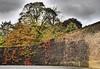 DeFenCe. (WaRMoezenierr.) Tags: muur mauer defence verdediging goes herfst otono autumn colors leaves bladeren kleur color muro zuid beveland zeeland nederland netherlands panasonic lumix holanda